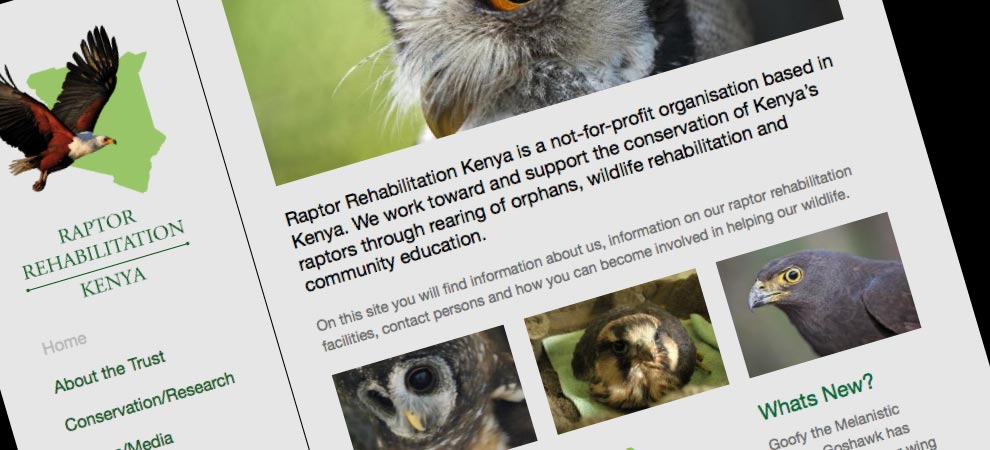 Raptor rehab website
