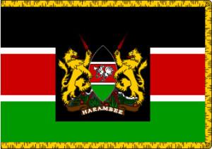 Mzee standard 1