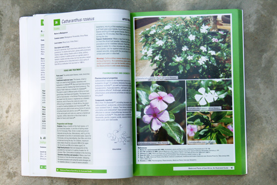 Medicial-plants-inside-page