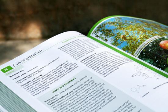Medicinal-plants-inside-page-2