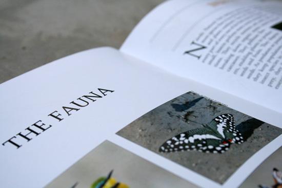 NairobiNationalPark-Fauna-page