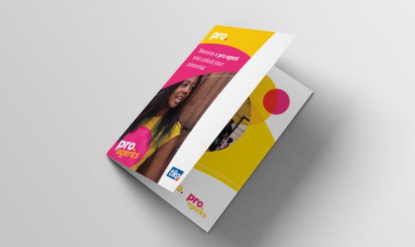 Triggerise (Pro.) Brochure